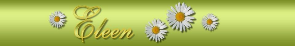 Ilu- ja Tervisesalong Eleen -